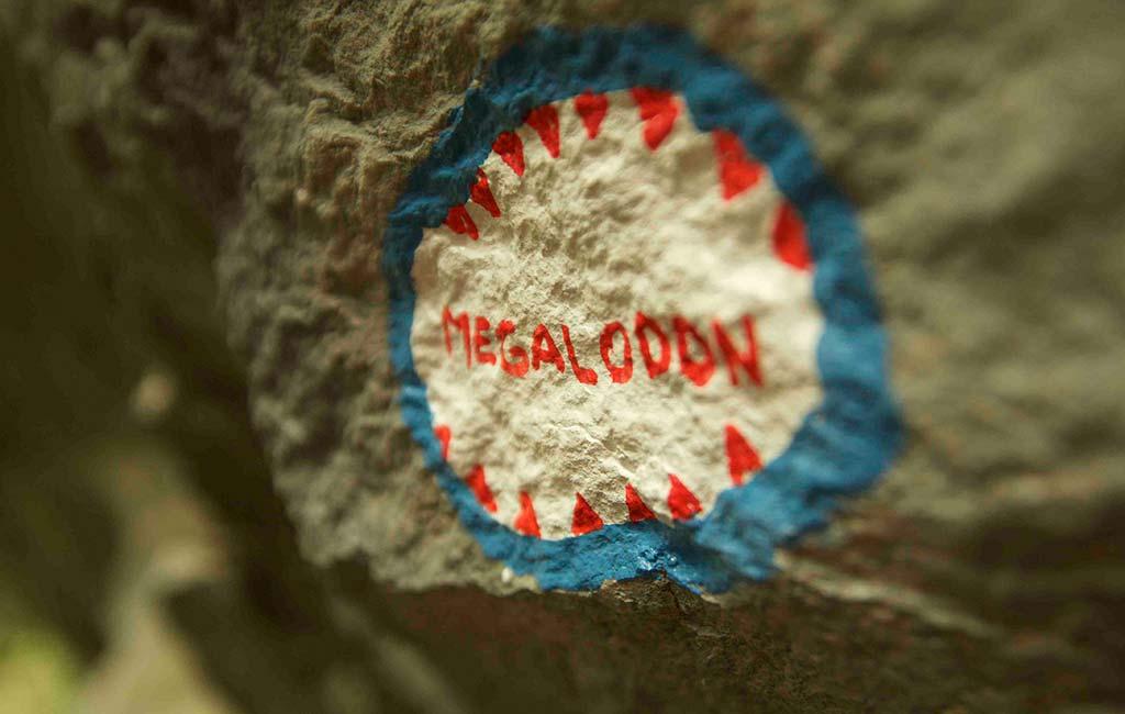 """Das Bild zeigt eine BEschriftung einer Kletterroute mit dem Namen """"Megalodon"""". In einem blauen Kreis steht der Name, umgeben von roten Haifischzähnen um den Namen zu unterstreichen."""