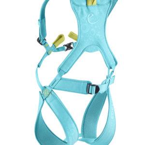 Das Bild zeigt das Edelrid Fraggle Kinder Klettergeschirr. Der türkise Klettergurt ist in Bildmitte mit all seinen Details von hinten zu sehen. Man erkennt die Beinschlaufen, das Hüftband, die Brust- bzw. Schultergürtel und die gelbe Anseilschlaufe.