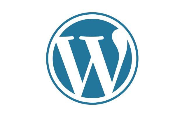 Das Bild zeigt das Logo von WordPress. Es soll in dem Beitrag über SEO Optimierung für WordPress Seiten gleich zeigen worum es hier geht.